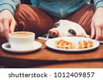 young man with labrador...   Shutterstock . vector #1012409857