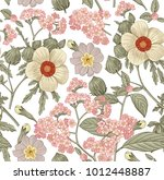 seamless pattern. beautiful... | Shutterstock .eps vector #1012448887