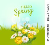 hello spring  a bouquet of... | Shutterstock .eps vector #1012671307