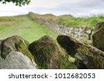 Green Moss Lichen Covered Ston...