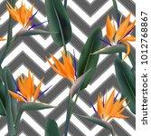 bird of paradise tropical... | Shutterstock .eps vector #1012768867