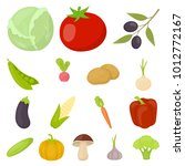 different kinds of vegetables... | Shutterstock . vector #1012772167