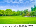 green forest grass in the park | Shutterstock . vector #1012842073