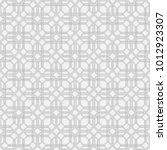 vector seamless models. modern...   Shutterstock .eps vector #1012923307
