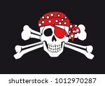 skull and crossbones on a black ... | Shutterstock . vector #1012970287