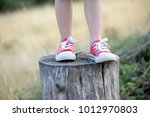 legs of boy in red sneakers .... | Shutterstock . vector #1012970803