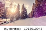 winter landscape with spruce... | Shutterstock . vector #1013010043