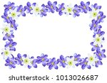 spring flowers snowdrops... | Shutterstock . vector #1013026687