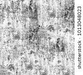 texture grunge monochrome.... | Shutterstock . vector #1013048023