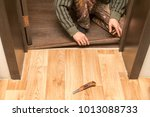 a man is making a threshold on...   Shutterstock . vector #1013088733
