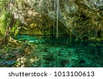 grand cenote. this is one of... | Shutterstock . vector #1013100613