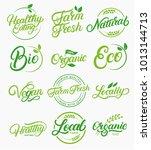 set of organic  local  fresh ... | Shutterstock . vector #1013144713