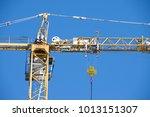 crane. construction crane. huge ...   Shutterstock . vector #1013151307