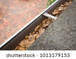 Looking Down At Rain Gutters...