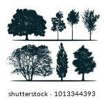 Tree Silhouettes   Green Oak ...