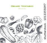 vector frame with vegetables .... | Shutterstock .eps vector #1013355097