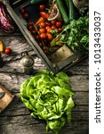 organic food. organic... | Shutterstock . vector #1013433037