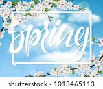 spring lettering and cherry...   Shutterstock .eps vector #1013465113