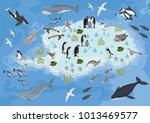 isometric 3d antarctica flora... | Shutterstock .eps vector #1013469577