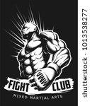 vector mma fighter | Shutterstock .eps vector #1013538277