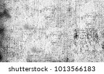 texture black and white... | Shutterstock . vector #1013566183