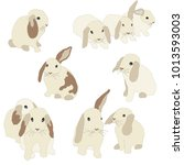 set of cute funny bunnies. cute ... | Shutterstock .eps vector #1013593003
