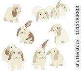 set of cute funny bunnies. cute ... | Shutterstock .eps vector #1013593003