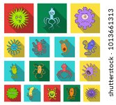 types of funny microbes flat... | Shutterstock . vector #1013661313