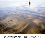 Footprints On Beach Black And...