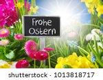 sunny spring flower meadow ... | Shutterstock . vector #1013818717