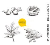hand drawn sketch spices set.... | Shutterstock .eps vector #1013865787