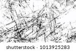 distressed black and white... | Shutterstock .eps vector #1013925283