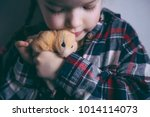 Cute Girl Holding A Hamster ...
