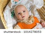retro style 60s baby vintage    Shutterstock . vector #1014278053