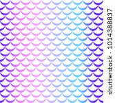 fish tail or mermaid scale... | Shutterstock .eps vector #1014388837