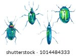 watercolor set of green beetles.... | Shutterstock . vector #1014484333