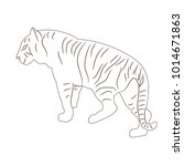 isolated sketch of a tiger ... | Shutterstock . vector #1014671863