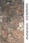 Small photo of Abstract background of laterite stone wall. Texture surface of laterite stone wall.