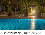 pool at night with lush... | Shutterstock . vector #1014691333