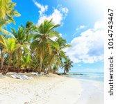 secluded beach on saona island  ...   Shutterstock . vector #1014743467