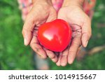 the hands of elderly holding... | Shutterstock . vector #1014915667