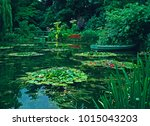 the garden and the japanese... | Shutterstock . vector #1015043203
