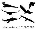 set of realistic vector... | Shutterstock .eps vector #1015069387