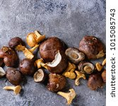 Small photo of Heap of fresh forest porcini boletus and chanterelles mushrooms over gray texture background. Top view with space. Square image