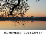 dawn. summer dawn. nature wakes ... | Shutterstock . vector #1015129567