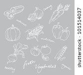 set of vegetables doodles vector | Shutterstock .eps vector #101514037