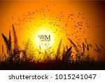 nature birds flying at sunset   Shutterstock .eps vector #1015241047