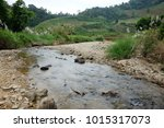 Stream Natural Water Of...
