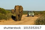 taken in addo national park ...   Shutterstock . vector #1015352017