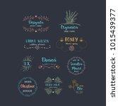 vector set of handdrawn floral... | Shutterstock .eps vector #1015439377